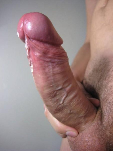 член стоячий фото порно